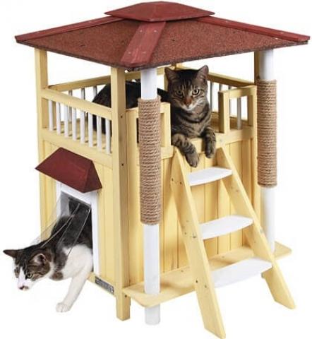 Maison pour chat : comment opter pour la meilleure photo 3